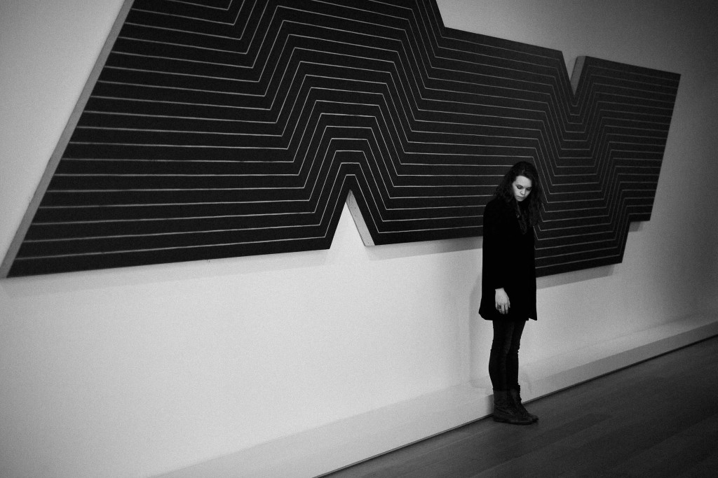 Art Institute of Chicago Photography (1 of 1)-8